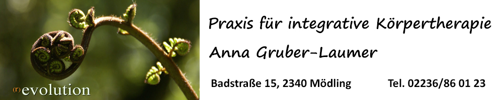 Praxis für integrative Koerpertherapie